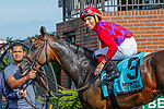 JUNE 26, 2021: Runaway Rumour (NY), #9, ridden by Luis Cardenas, wins the Wild Applause Stakes for 3-year old fillies on the turf, at Belmont Park in Elmont, New York. Sue Kawczynski/Eclipse Sportswire/CSM