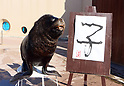 A sea lion shows a calligraphy to celebrate the Year of the Rat for New Year's attraction