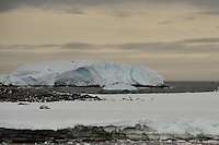 Penguins & Ice - Boat Harbor, Commonwealth Bay, Cape Denison, Antarctica