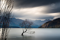 Late in the autumn, when all the leaves had fallen, Wanaka photographer Christopher Thompson was driving past Wanaka's famous 'Lone Tree' and was intrigued by the sense of mood evident in the backdrop - creating a beautiful long exposure of the moody scene...
