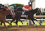 October 17, 2015: Sarah Sis and Florent Geroux win the 17th running of the Lexus Raven Run Grade 2 $250,000 at Keeneland for trainer Ingrid Mason and owner Joe Ragsdale. Samantha Bussanich/ESW/Cal Sport Media