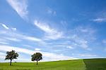 Europa, DEU, Deutschland, Baden-Wuerttemberg, Kraichgau, Huegellandschaft, Kraichgauer Huegelland, Typische Landschaft, Kategorien und Themen, Natur, Umwelt, Landschaft, Jahreszeiten, Stimmungen, Landschaftsfotografie, Landschaften, Landschaftsphoto, Landschaftsphotographie, Wetter, Himmel, Wolken, Wolkenkunde, Wetterbeobachtung, Wetterelemente, Wetterlage, Wetterkunde, Witterung, Witterungsbedingungen, Wettererscheinungen, Meteorologie, Bauernregeln, Wettervorhersage, Wolkenfotografie, Wetterphaenomene, Wolkenklassifikation, Wolkenbilder, Wolkenfoto<br /> <br /> [Fuer die Nutzung gelten die jeweils gueltigen Allgemeinen Liefer-und Geschaeftsbedingungen. Nutzung nur gegen Verwendungsmeldung und Nachweis. Download der AGB unter http://www.image-box.com oder werden auf Anfrage zugesendet. Freigabe ist vorher erforderlich. Jede Nutzung des Fotos ist honorarpflichtig gemaess derzeit gueltiger MFM Liste - Kontakt, Uwe Schmid-Fotografie, Duisburg, Tel. (+49).2065.677997, archiv@image-box.com, www.image-box.com]