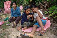 """Coca growers known as """"cocaleros"""", take rest as they harvest coca leaves in a """"cato"""", a coca plot which measurement is 40x40 square meters, in the Chipiriri vicinity, Chapare region, Bolivia. November 30, 2019.<br /> Des cultivateurs de coca, appelés """"cocaleros"""", se reposent en récoltant des feuilles de coca dans un """"cato"""", une parcelle de coca de 40x40 mètres carrés, dans les environs de Chipiriri, région du Chapare, Bolivie. 30 novembre 2019."""