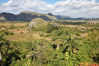 Cuba, Pinar del Rio Region, Valle de Viñales (Vinales) Area.  Limestone Mogotes Provide a Backdrop to Fields of Tobacco and Corn.