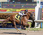 HALLANDALE BEACH, FL - FEB 17:WhereSheToldMeToGo #4 trained by Anthony Pecoraro with Miguel Vasquez in the irons wins the $60,000 American Fabius Claiming Stakes at Gulfstream Park on February 17, 2018 in Hallandale Beach, Florida. (Photo by Bob Aaron/Eclipse Sportswire/Getty Images)