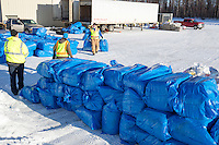 Volunteers stack bales of straw to stage them for the Iditarod Air Force planes at the Willow, Alaska airport during the Food Flyout on Saturday, February 20, 2016.  Iditarod 2016