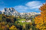 Oesterreich, Salzburger Land, Pinzgau: Bauernhoefe oberhalb von Dorf Leogang im Leoganger Tal vor den Leoganger Steinbergen mit dem Birnhorn (2.634 m) | Austria, Salzburger Land, Pinzgau: mountain farms above village Leogang at Leoganger Valley with Leoganger Steinberge mountains, summit Birnhorn (2.634 m)