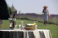 Europe/France/Rhône-Alpes/69/Rhône/Bagnols: Dans les jardins de l'hôtel-restaurant du château de Bagnols - AUTO N°270