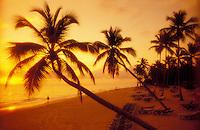 Dominican Republic. Bavaro Beach. sunrise on beach