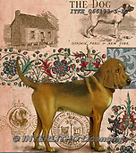 Isabella, REALISTIC ANIMALS, REALISTISCHE TIERE, ANIMALES REALISTICOS, paintings+++++,ITKE066173-S-LC,#a#, EVERYDAY ,dogs ,collage
