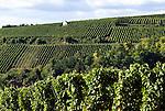 Germany, Baden-Wuerttemberg, Markgraefler Land, vineyards near wine village Auggen