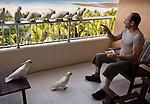 Photographer Gavriel Jecan & Cockatoos, Hamilton Island, Queensland, Australia