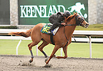 07 April 2011.  Hip #169 Any Given Saturday - Kristi's Sunshine filly, consigned by Kirkwood Stables.