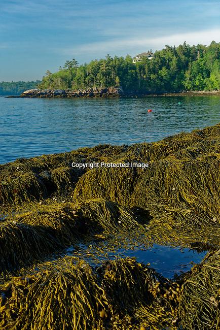 Penobscot Bay, Rockport, Maine, USA