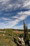 Israel, Jerusalem Mountains. Scenery at Begin Park