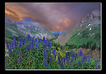 Photoshop. Added a complementary sunset to a gray sky. Yankee Boy Basin, Ouray, Colordao.