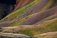 Tundra Patterns, Stony Pass