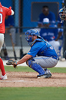 Toronto Blue Jays catcher Ryan Gold (83) during an Instructional League game against the Philadelphia Phillies on October 7, 2017 at the Englebert Complex in Dunedin, Florida.  (Mike Janes/Four Seam Images)