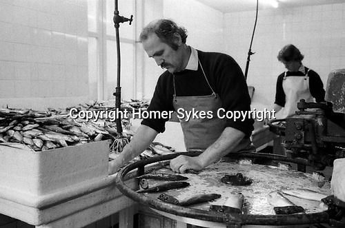 Isle of Man, Douglas, 1970s. Fishing industry fish processing factory 1978