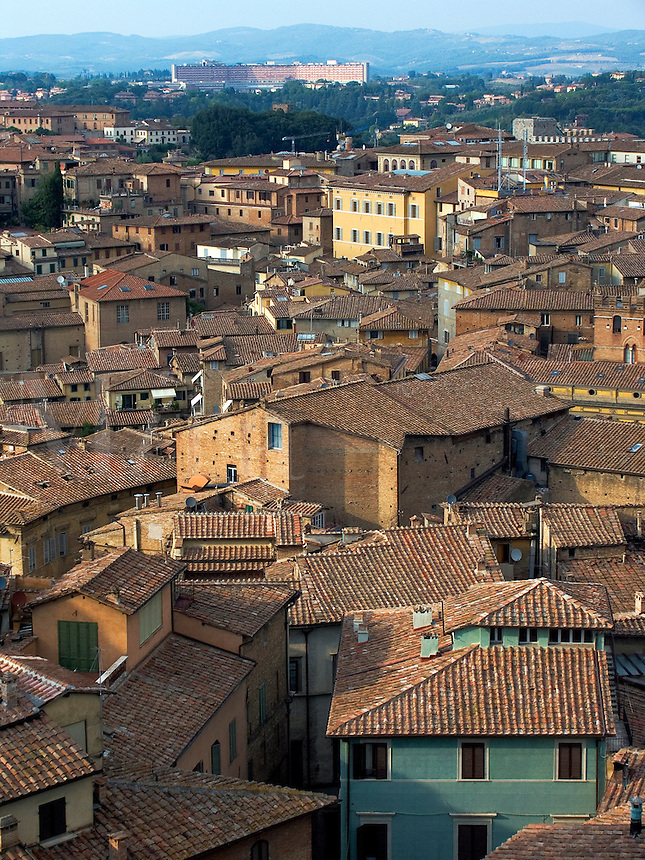 Rooftop view of Siena, Ital