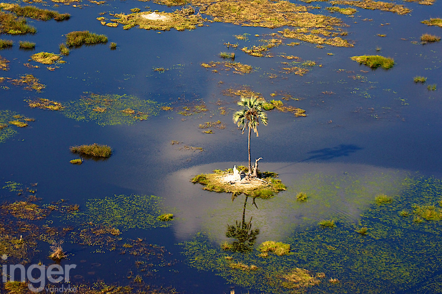 Aerial View of the Okavango Delta in Botswana