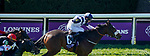 November 7, 2020 : Glass Slippers, ridden by Tom Eaves, wins the Turf Sprint on Breeders' Cup Championship Saturday at Keeneland Race Course in Lexington, Kentucky on November 7, 2020. John Voorhees/Breeders' Cup/Eclipse Sportswire/CSM