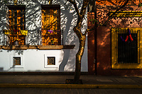 Windows and balconies of colonial houses are seen decorated with chiseled paper (papel picado) during the Day of the Dead celebrations in Oaxaca, Mexico, 31 October 2019. Day of the Dead (Día de Muertos), a religious holiday combining the death veneration rituals of Pre-Hispanic cultures with the Catholic practice, is widely celebrated throughout all of Mexico. Based on the belief that the souls of the departed may come back to this world on that day, people gather together while either praying or joyfully eating, drinking, and playing music, to remember friends or family members who have died and to support their souls on the spiritual journey.