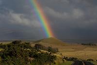 Pu'u's Anuenue:  A powerful rainbow seems to touch a pu'u (hill or mound) near a road going through Kamuela (a.k.a. Waimea), Big Island of Hawai'i.
