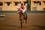 AUGUST 28, 2021:  CZ Rocket at Del Mar Fairgrounds in Del Mar, California on August 28, 2021. Evers/Eclipse Sportswire/CSM