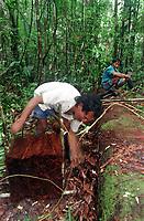 """Índio Werekena, morador da comunidade de Anamoim no alto rio Xié, prepara um pacote de piaçaba  chamada de      """" piraíba """"  (Leopoldínia píassaba Wall),após cortá-la.  A  árvore que normalmente aloja os mais variados tipos de insetos representando um grande risco aos índios durante sua coleta . A fibra  um dos principais produtos geradores de renda na região é  coletada de forma rudimentar. Até hoje é utilizada na fabricação de cordas para embarcações, chapéus, artesanato e principalmente vassouras, que são vendidas em várias regiões do país.<br />Alto rio Xié, fronteira do Brasil com a Venezuela a cerca de 1.000Km oeste de Manaus.<br />06/06/2002.<br />Foto: Paulo Santos/Interfoto Expedição Werekena do Xié<br /> <br /> Os índios Baré e Werekena (ou Warekena) vivem principalmente ao longo do Rio Xié e alto curso do Rio Negro, para onde grande parte deles migrou compulsoriamente em razão do contato com os não-índios, cuja história foi marcada pela violência e a exploração do trabalho extrativista. Oriundos da família lingüística aruak, hoje falam uma língua franca, o nheengatu, difundida pelos carmelitas no período colonial. Integram a área cultural conhecida como Noroeste Amazônico. (ISA)"""