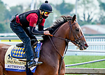 October 2, 2020: Authentic exercises as horses prepare for the Preakness Stakes at Pimlico Race Course in Baltimore, Maryland. Scott Serio/Eclipse Sportswire/CSM
