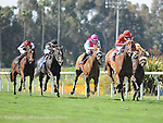 June 18, 2011.Sugarinthemorning ridden by Patrick Valenzzuela leading in the stretch and winning the Manhattan Beach Stakes at Hollywood Park, Inglewood, CA.