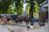 Belgique, Flandre Occidentale, Bruges, partie méridionale du centre historique classé Patrimoine Mondial de l'UNESCO, Square de la Vigne (Wijngaardplein),  la Fontaine des Chevaux  et calèche  // Belgium, Western Flanders, Bruges, Southern part of the historic centre listed as World Heritage by UNESCO, Vineyard square (Wijngaardplein),  the Fountain of Horses  and carriage