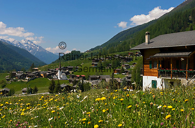 Switzerland, Canton Valais, community Grafschaft (district Biel) at valley Goms