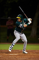 AZL Athletics Green Matthew Koehler (13) at bat during an Arizona League game against the AZL Dodgers Lasorda at Camelback Ranch on June 19, 2019 in Glendale, Arizona. AZL Dodgers Lasorda defeated AZL Athletics Green 9-5. (Zachary Lucy/Four Seam Images)