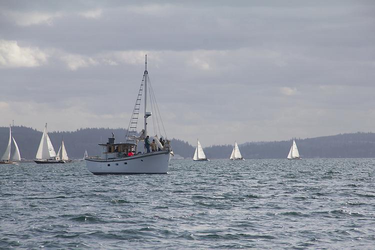 Aleutian Tern, yacht, Shipwrights Regatta, 30th annual, February 27 2021, Port Townsend, Puget Sound, Salish Sea, Olympic Peninsula, Washington State, Pacific Northwest, USA,