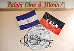 Nicaraguen and FSLN flag on display at the Museum of the Revolution, Leon, Nicaragua