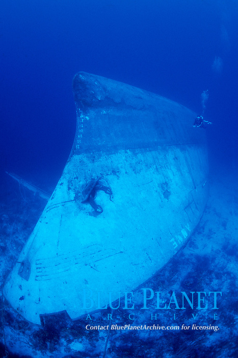 diver explores wreck of the Anne, upside down, partially hanging over wall at a minimum depth of 95 feet, New Providence, Bahamas, Caribbean Sea, Atlantic Ocean
