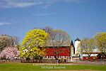 Fam in Spring, Bucks County, Pennsylvania