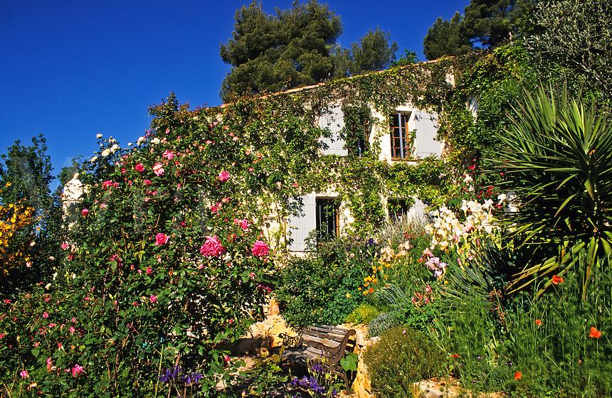 France. Provence. House and garden in Summer. Property released.