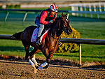 LOUISVILLE, KY - APRIL 30: Wonder Gadot, trained by Mark Casse, exercises in preparation for the Kentucky Oaks at Churchill Downs on April 30, 2018 in Louisville, Kentucky. (Photo by Scott Serio/Eclipse Sportswire/Getty Images)