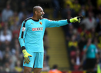 Heurelho Gomes  of Watford   during the Barclays Premier League match Watford and Swansea   played at Vicarage Road Stadium , Watford