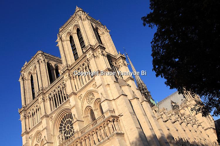West front of Notre Dame cathedral. city of Paris. Paris. France