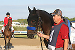 September 20, 2014: Bayern joins the other contenders in the walking ring before the Grade II Pennsylvania Derby at Parx Racing in Bensalem, PA.  Joan Fairman Kanes/ESW/CSM