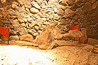 One of the dinosaur fossil bones that gave the name to the winery. Bodega Familia Schroeder Winery, also called Saurus, Neuquen, Patagonia, Argentina, South America