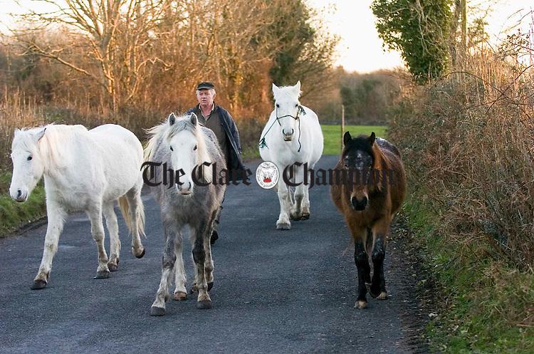 James Walsh with his horses at Garryland Gort. Photograph by John Kelly.