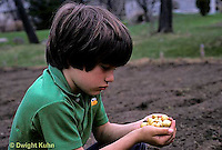 HS16-014z  Onion - boy planting onion bulbs in garden