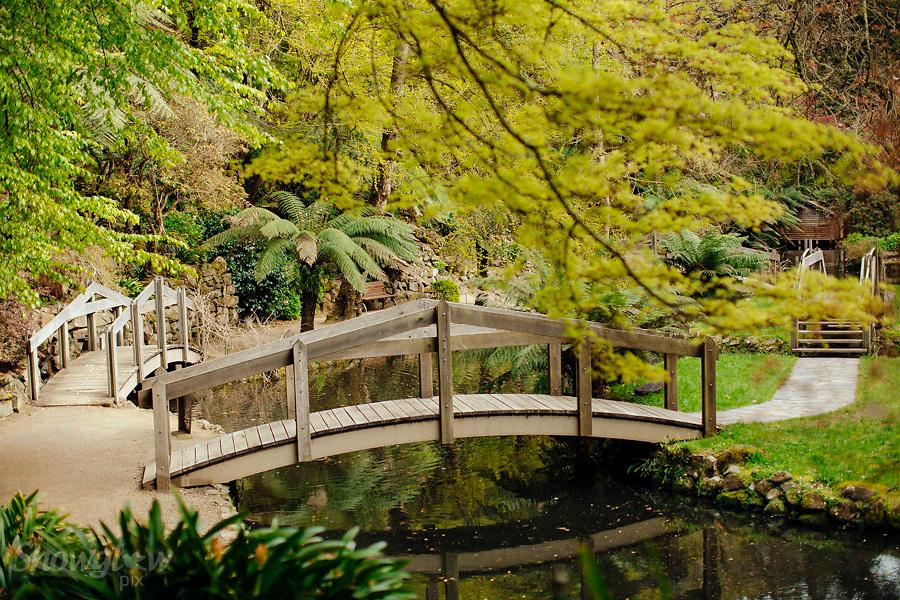Image Ref: DR042<br /> Location: Alfred Nichols Gardens<br /> Date: 2nd October, 2016