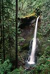 Marymere Falls, Olympic National Park, Washington, USA