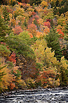 Fall fliage at Big Amberjackmockamus Falls, Piscataquis County, ME